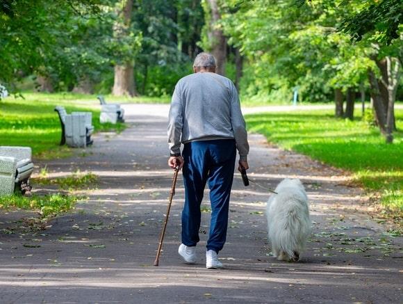 wandelstok-kopen-steunstok-informatie